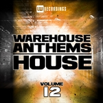Warehouse Anthems/House Vol 12