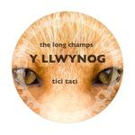 Y Llwynog