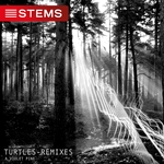 Turtles (Remixes)