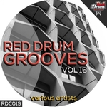Red Drum Grooves 16