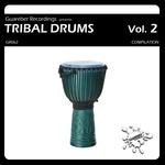 Tribal Drums Compilation Vol2