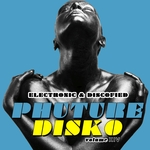 Phuture Disko Vol 14/Electrified & Discofied