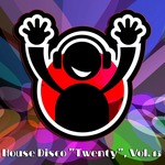 "House Disco ""Twenty"" Vol 13: House Music 4 DJ"