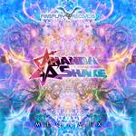 ANANDA SHAKE - Megamix (Front Cover)