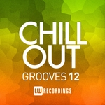 Chill Out Grooves Vol 12
