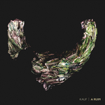 KAUF - A Ruin (Front Cover)
