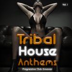 Tribal House Anthems Vol 1 (Progressive Club Grooves)