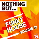 Nothing But... Funky House Vol 13
