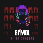 BI MMOL PROJECT - After Shadows (Front Cover)