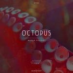 MARTIN KLEINERT - Octopus (Front Cover)
