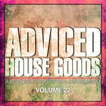 Adviced House Goods Vol 22