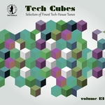 VARIOUS - Tech Cubes Vol 13 (Selection Of Finest Tech-House Tunes!) (Front Cover)