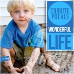 TRIBUTE VOCALS - Wonderful Life (Front Cover)