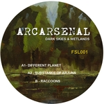 ARCARSENAL - Dark Skies & Wetlands (Front Cover)