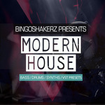 Modern House (Sample Pack WAV/Spire Presets)