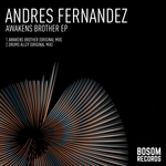 ANDRES FERNANDEZ - Awakens Brother EP (Front Cover)