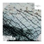 Variant Electronic 001