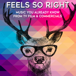 VARIOUS - Feels So Right: Music You Already Know From TV, Film & Commercials (Front Cover)
