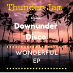 DOWNUNDER DISCO - Wonderful EP (Front Cover)