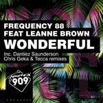FREQUENCY 88 feat LEANNE BROWN - Wonderful (Front Cover)