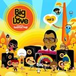 VARIOUS - Big Love Vol 3 Mixed By Seamus Haji (Front Cover)