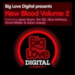 PER QX/NINO ANTHONY/JESSE VOORN/GRANT NALDER/ADAM ASENJO - Big Love Digital Presents New Blood Vol 2 (Front Cover)