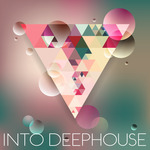 VARIOUS - Into Deephouse (Front Cover)
