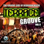 VARIOUS - Terrace Groove Vol 8 (Front Cover)