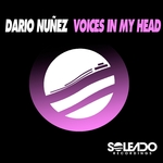 DARIO NUNEZ - Voices In My Head (Front Cover)