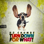 DJ CHUMBE - Turn Down For What! (Front Cover)