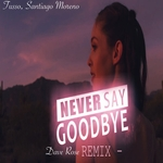 DJ TUSSO/SANTIAGO MORENO - Never Say Goodbye (Front Cover)