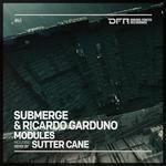 SUBMERGE/RICARDO GARDUNO - Modules (Front Cover)