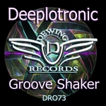 Groove Shaker