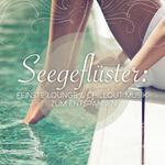 VARIOUS - SeegeflAsster/Feinste Lounge & Chillout Musik Zum Entspannen (Front Cover)