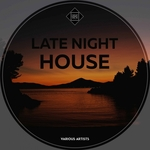 VARIOUS - Late Night House (Front Cover)