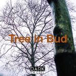 Tree In Bud