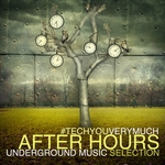 TechYouVeryMuch After Hours (Underground Music Selection)