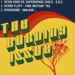 The Burning Issue (Sampler)