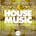 House Music - Nothing More, Nothing Less, Vol 1
