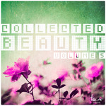 Collected Beauty Vol 5