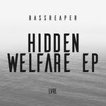 Hidden Welfare