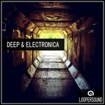 Deep & Electronica (Sample Pack WAV)