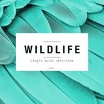 Wildlife - Unique Music Selection Vol 10