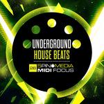 Underground House Beats (Sample Pack WAV/MIDI/LIVE/MASCHINE)