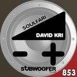Soulfari