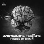 Pieces Of Brain
