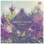 Deep Into The Vibe Vol 5