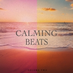 Calming Beats Vol 2 (Finest In Chill Out & Ambient Music)