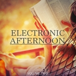 Electronic Afternoon Vol 2 (30 Wonderful Electronic Moments)