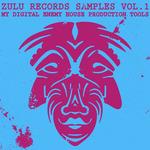 Samples Vol 1: My Digital Enemy House Production Tools (Sample Pack WAV)